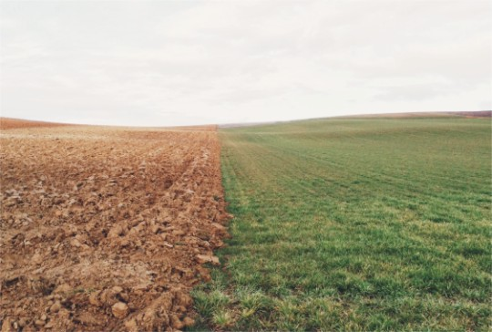 MaxCalc podnosi błyskawicznie ph gleby